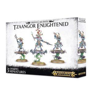 Warhammer: Age of Sigmar: Disciples of Tzeentch Tzaangor Enlightened